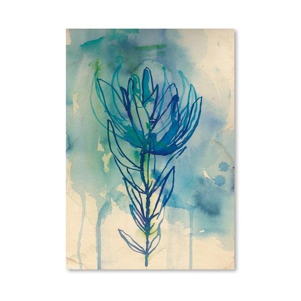 Plakat Blue Wash Protea, 30x42 cm