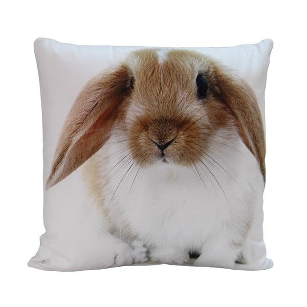Poduszka Rabbit Paul, 45x45 cm