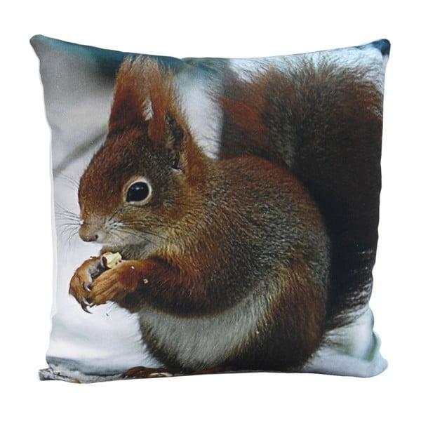 Poduszka Squirrel Sam, 45x45 cm