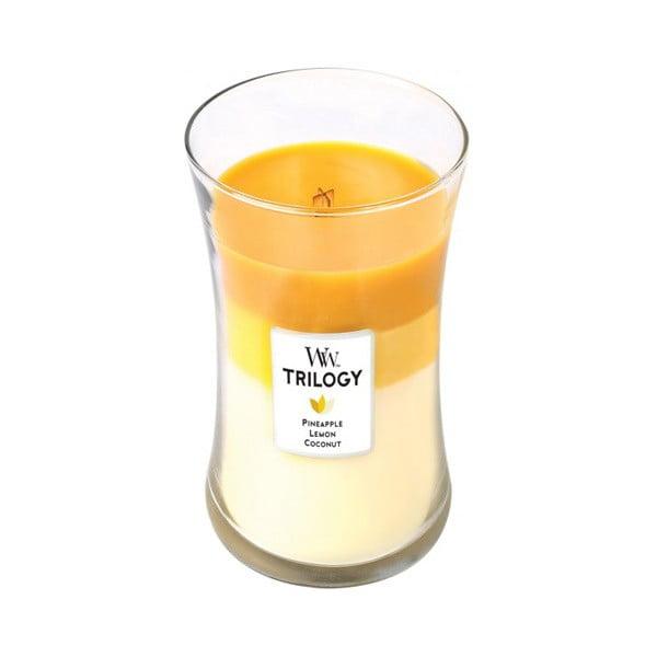 Świeczka zapachowa WoodWick Trilogy Tropical