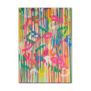 Obraz Parrot I, 50x70 cm