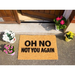 Wycieraczka Artsy Doormats Not You Again, 40x60 cm