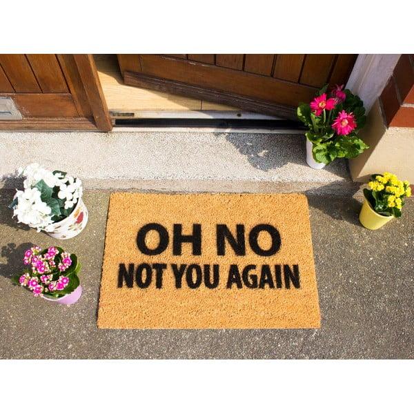 Wycieraczka Artsy Doormats Not You Again, 40x60 cm