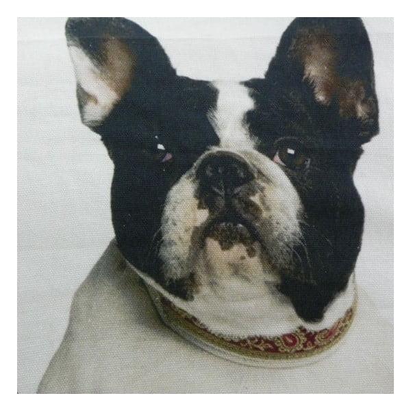 Poduszka French Bulldogs 50x50 cm