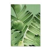 Plakat Tropi Leaves