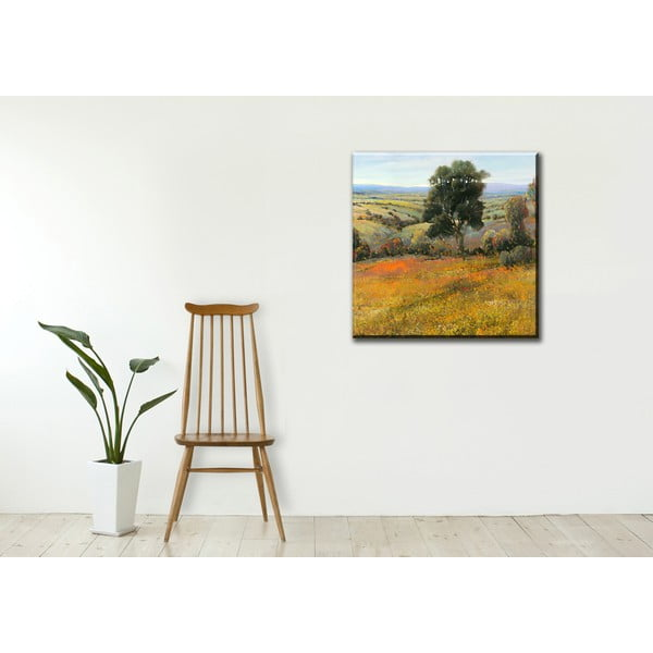 Obraz Field in Summer, 55x55 cm