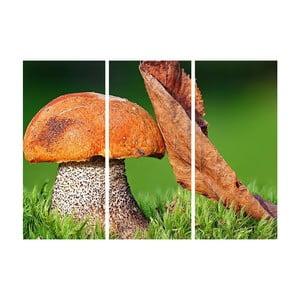 Obraz trzyczęściowy Jesienna przyjaźń