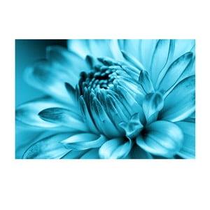 Obraz na szkle Niebieski kwiat, 40x60 cm
