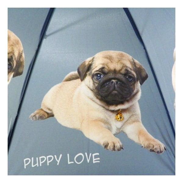 Parasol Baby Lapdog