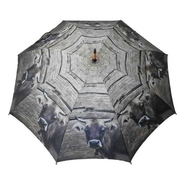 Parasol Swiss Cow