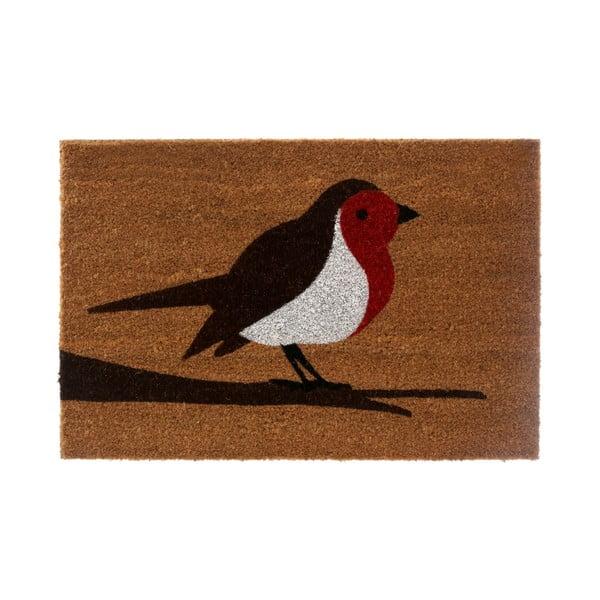 Wycieraczka Robin, 40x60 cm