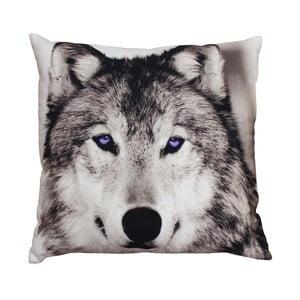 Poduszka ZOO Wolf, 45x45 cm