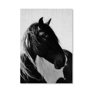 Plakat Horses