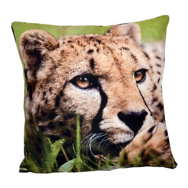 Poduszka Animals Leopard, 42x42 cm