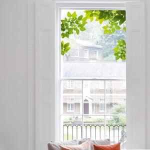 Naklejka na okno Through The Tree