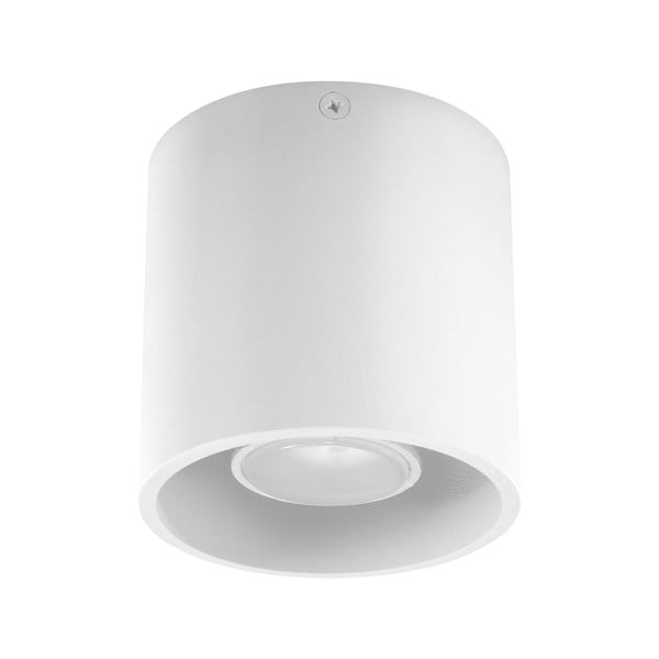 Lampa wisząca Nice Lamps Z81