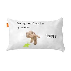 Poszewka na poduszkę Puppy, 50x30 cm