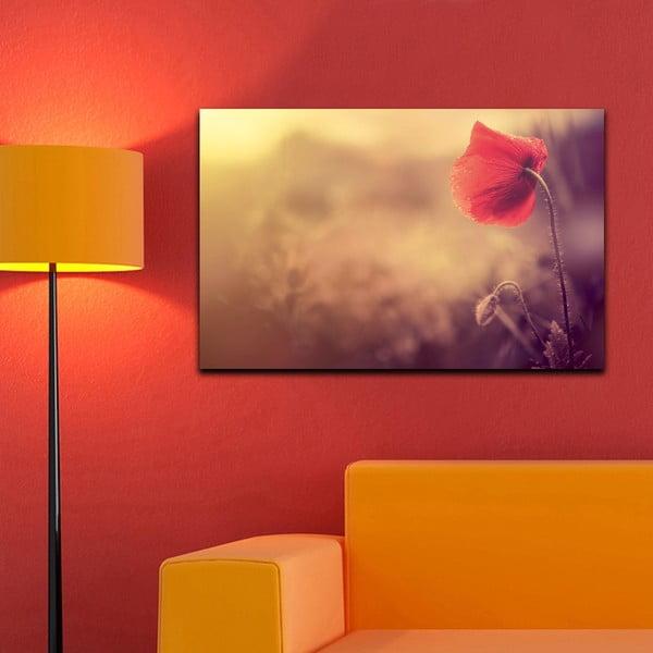 Obraz Mak, 45x70 cm