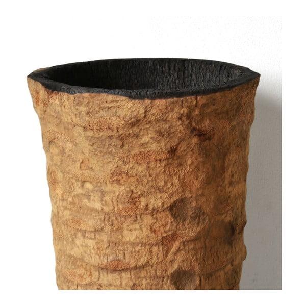 Palmowa doniczka Burn