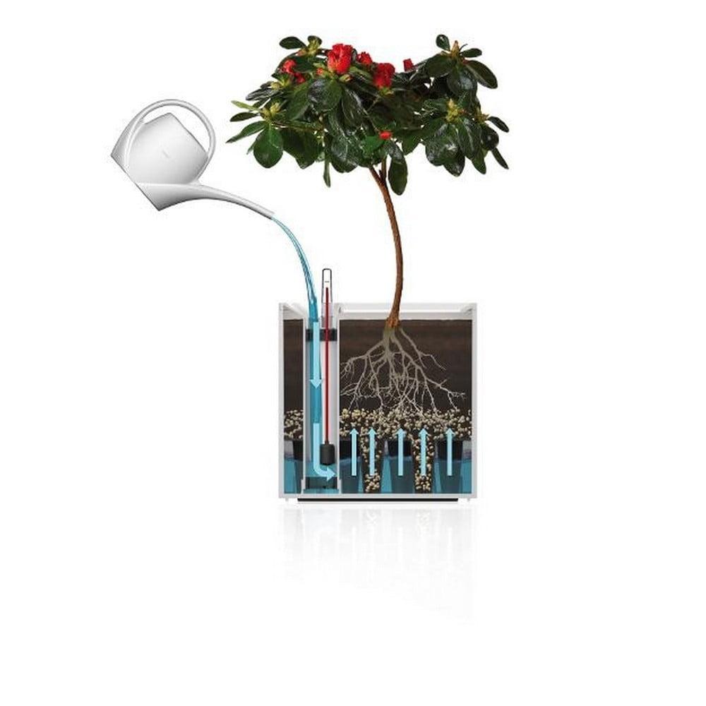 Biała Doniczka Z Systemem Nawadniania Flower Lover Quadrato 18x18 Cm Bonami