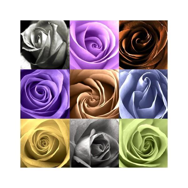Obraz na szkle Kolorowe kwiaty, 50x50 cm