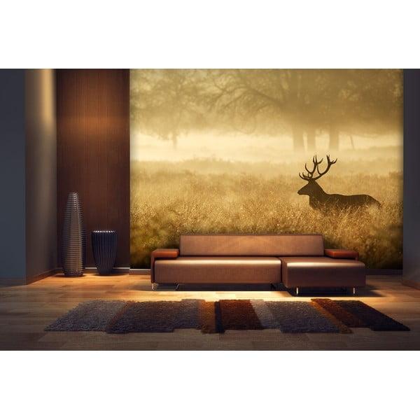 Wielkoformatowa tapeta Jeleń, 315x232 cm
