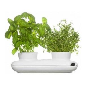 Doniczka na zioła Sagaform Duo Herb