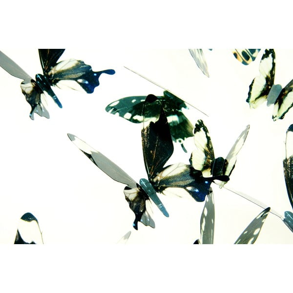 Naklejka 3D Ambiance Butterflies Chic Black