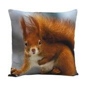 Poduszka Squirrel Ginger, 45x45 cm