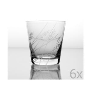 Zestaw 6 szklanek Tymotka 330 ml
