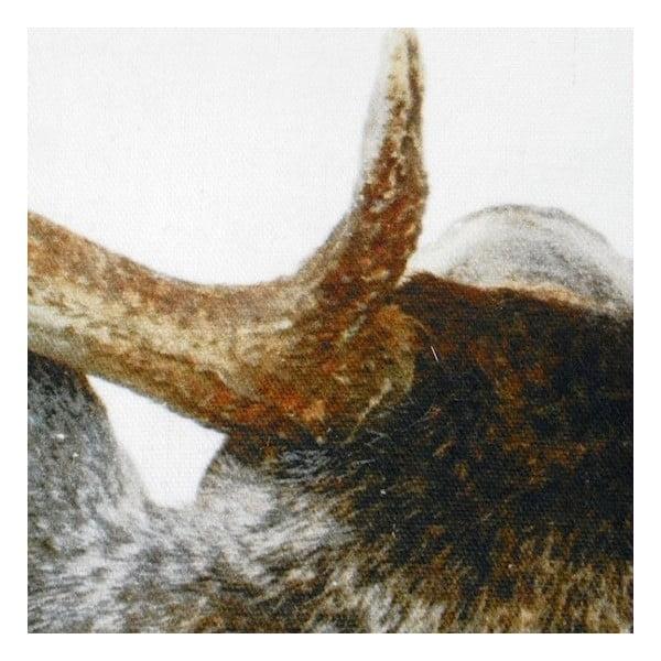 Poduszka Deer Back 50x50 cm