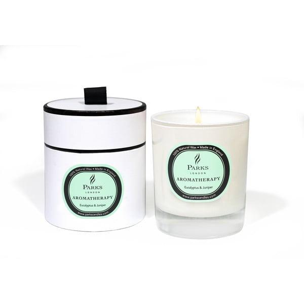 Świeczka o zapachu eukaliptusa i jałowca Parks Candles London, 50 godz. palenia