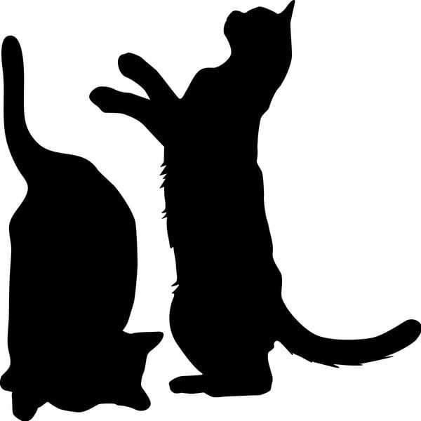 Zestaw 2 naklejek Cute Cats