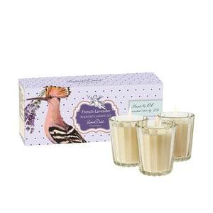 Zestaw 3 świeczek zapachowych French Lavender Lisbeth Dahl
