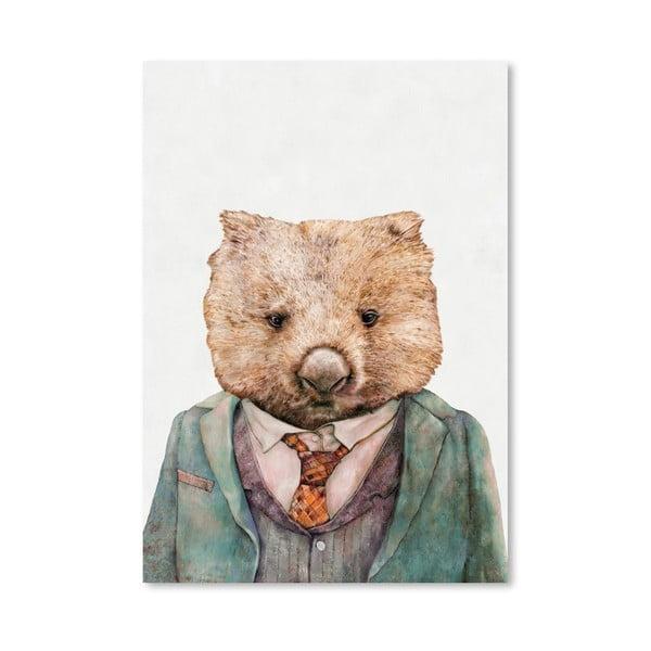 "Plakat ""Wombat"", 42x60 cm"