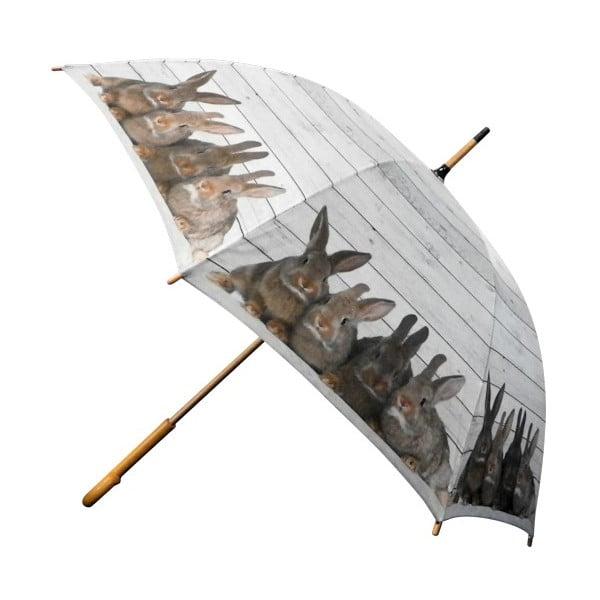 Parasol Scaffold Wood Rabbits Brown