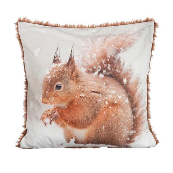 Poduszka Squirrel Velvet, 45x45 cm