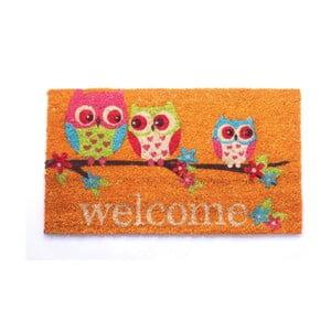 Wycieraczka Welcome Owls, 40x70 cm