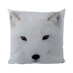 Poduszka Black Shake Polar Fox, 50x50 cm