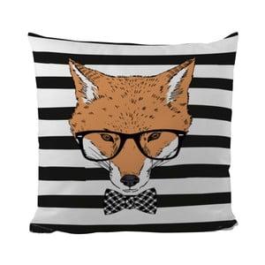 Poduszka Handsome Fox, 50x50 cm