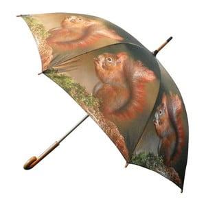 Parasol Nature Squirrel