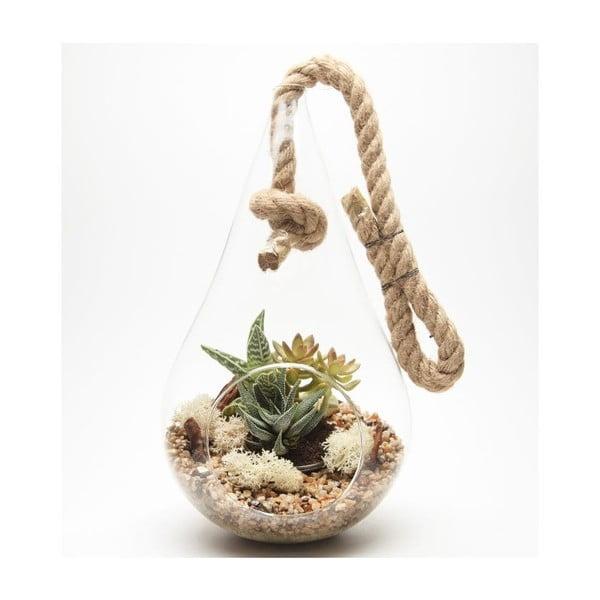 Terrarium z roślinami Tear Drop