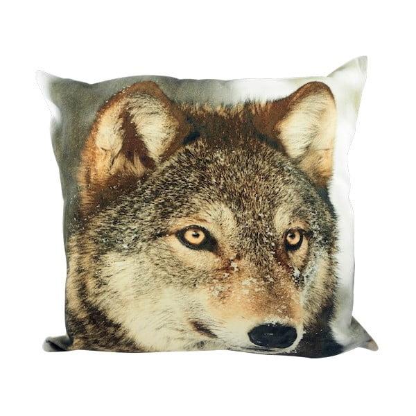 Poduszka Winter Wolf in Snow 50x50 cm
