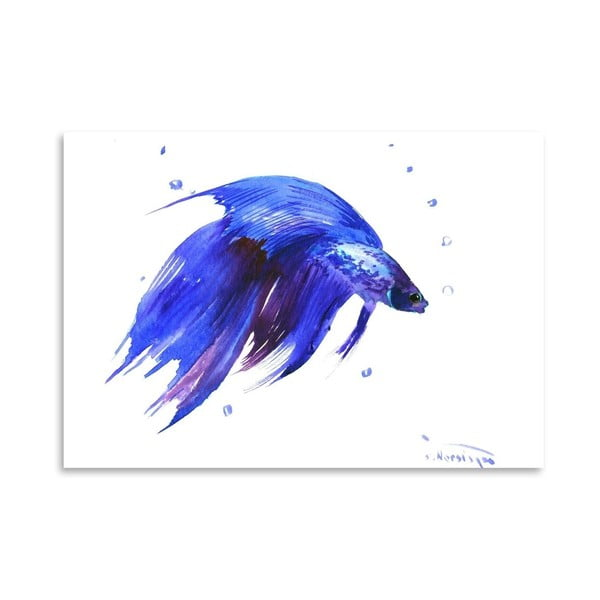 Plakat Betta Fish