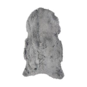 Jasnoszara skóra owcza z krótkim włosiem, 100x60 cm
