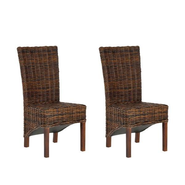 Zestaw 2 krzeseł rattanowych Safavieh Alexander