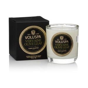 Świeczka o zapachu palisandrowca i liści oliwkowych i cytrynowych Voluspa Maison Votive, 25godz.