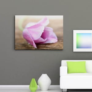 """Obraz na płótnie """"Kwiat z kroplami rosy"""", 50x70 cm"""