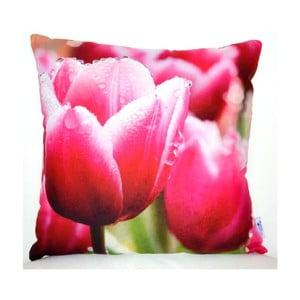 Poduszka Tulip, 42x42 cm