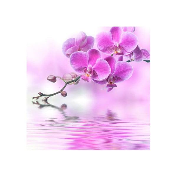 Obraz na szkle Orchidea I, 20x20 cm